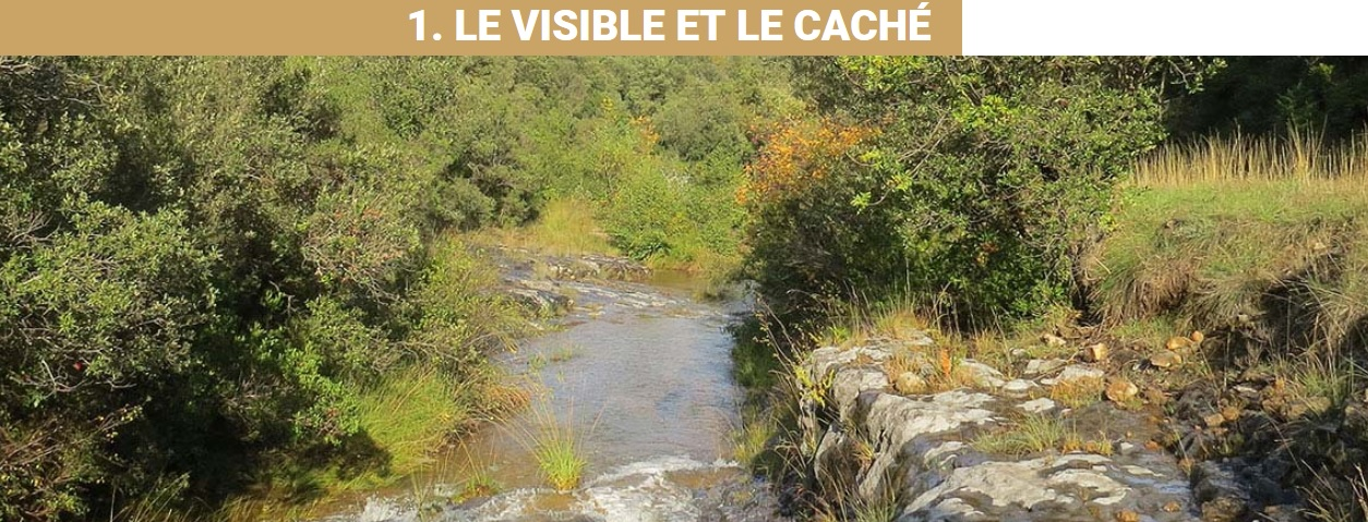 Pollution des cevennes