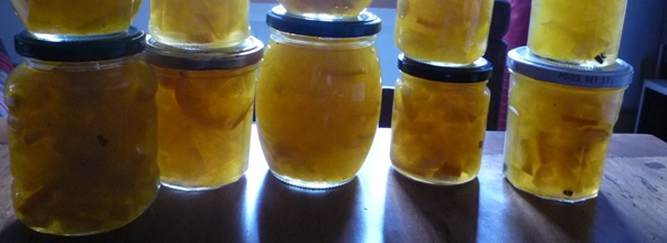 citre3