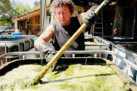 Au royaume de l absurdie la guerre du purin d ortie se - Utilisation du purin d ortie ...